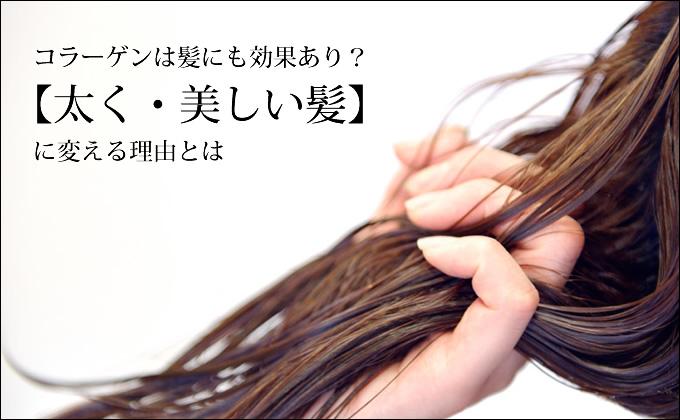コラーゲンの髪への効果