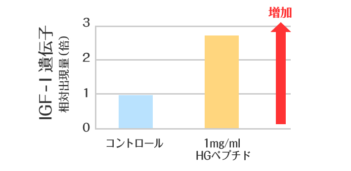 IGF-1出現量